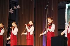 13 скрипка