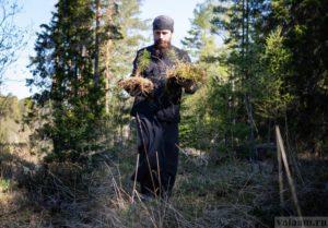 Валаамские монахи приступили к оздоровлению лесов архипелага